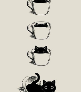 human cases, dark coffee and cats