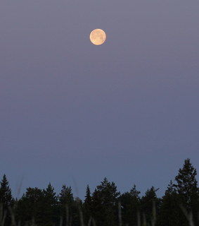 nightsky, moon and nature photography