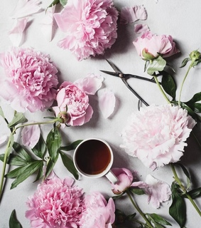 cup of coffee, pink and coffee time