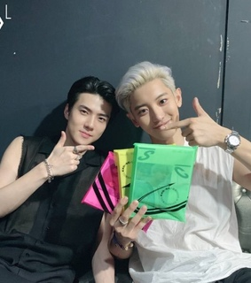 chanyeol, exo-sc and subunit