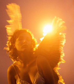 wings, beautiful and light