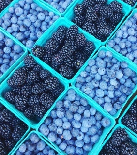 baskets, blueberries and summer