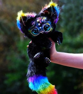 kitten, cute and rainbow