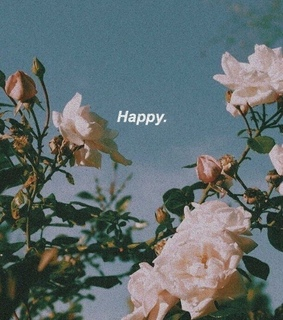 happy, aesthetic and wallpapers