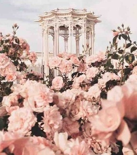 aesthetic, love and bouquets