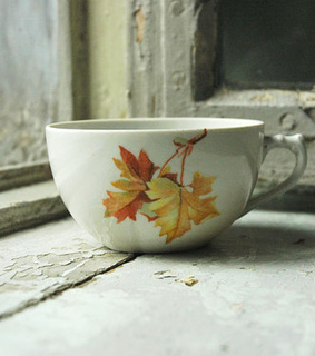 leafs, autumn and cup