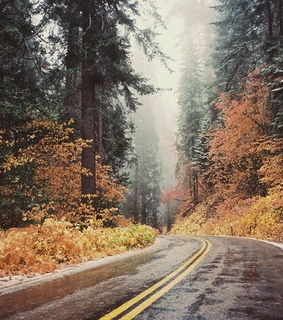 wanderlust, cozy and autumn