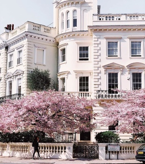 cherry blossoms, architecture and spring