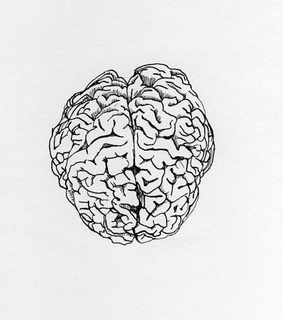 aes, brain and aesthetic