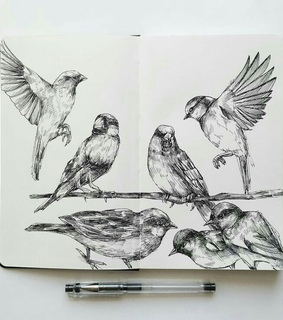 pen, sketches and drawings