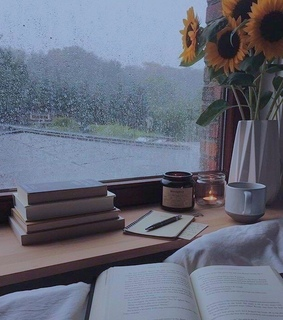 literature, cozy and reading