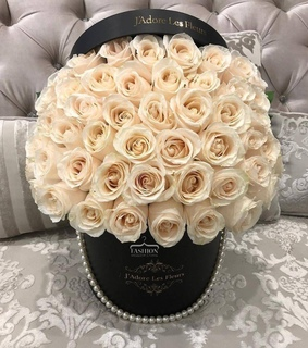 roses, white and flowers