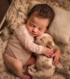 baby, cute and puppy