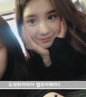 loona, lq loona and icons
