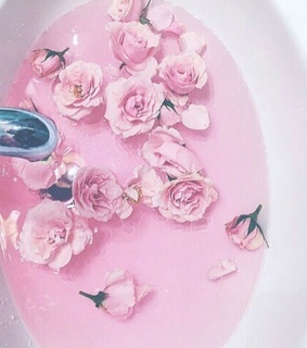 rose, pink water and roses