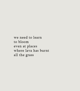 live, poetry and bloom
