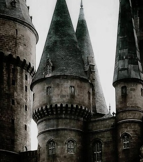 hogwarts, harry potter and hp