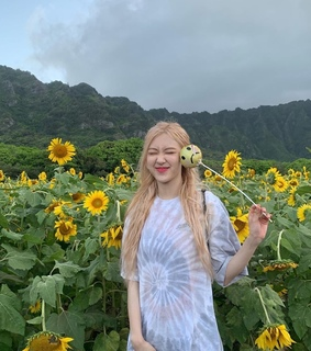 hawaii, yellow and park chaeyoung