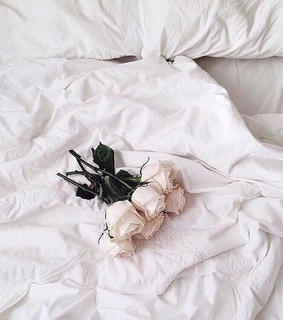 rose, luxury life and ???????