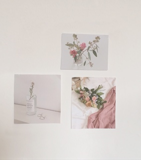 alternative, aesthetic tumblr and pink flower