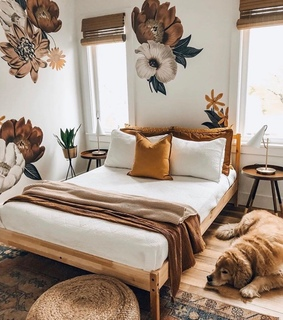 interior, bedroom and dog