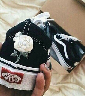 shoes and vans