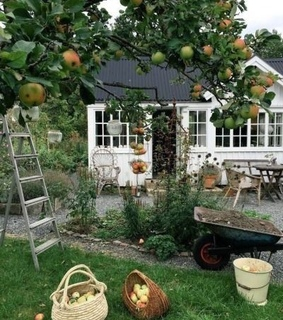 green house, farm house and apples