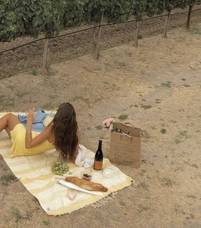 picnic, indie and nature