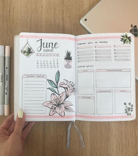 flowers, june and pink