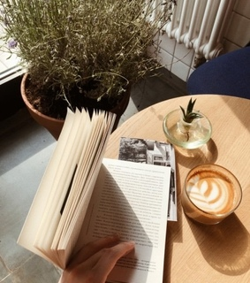 book, plants and books