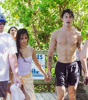 shawn mendes, camila cabello and Relationship