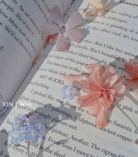 aesthetic, flowers and book