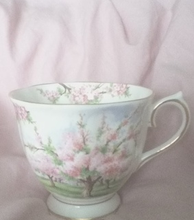 soft, vintage and blossom