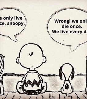 lesson, inspiration and snoopy