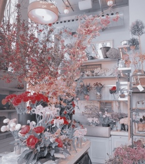flowers, places and ulzzang