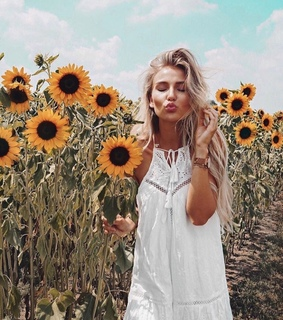 style, nature and sunflowers