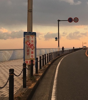 sunset, travel and tokyo