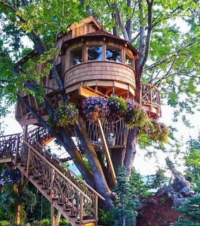 tree house, happy and cabin