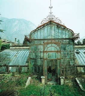 glass, green house and nature