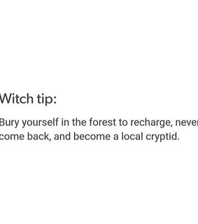 witch, forest and witch memes