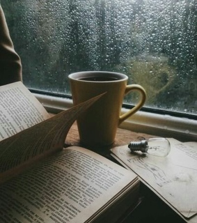 rainy, book and cozy