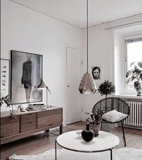 interior, home and plants
