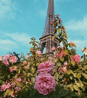 love, vintage and paris