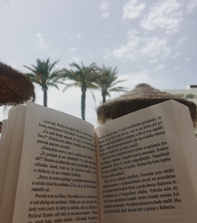 summer, spain and books