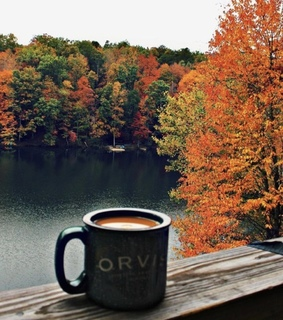autumn, aesthetic and we heart it