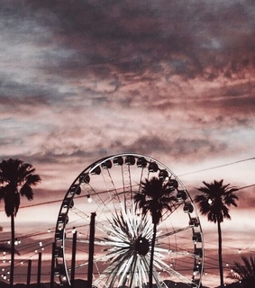 ferris wheel, amusement park and palm trees