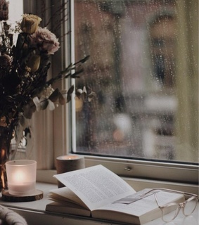 autumn, book and cozy