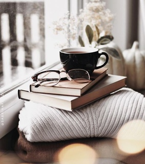 book, cozy and fashion