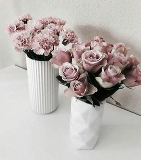 luxury life, rose and flowers