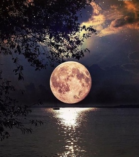 moon, night and landscape